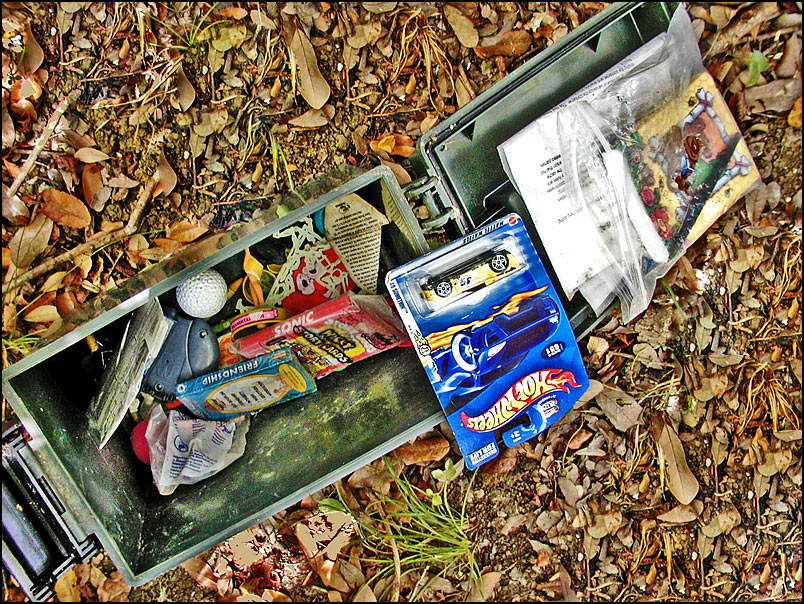 A Beginner S Guide And Tutorial To Geocaching A High Tech Treasure